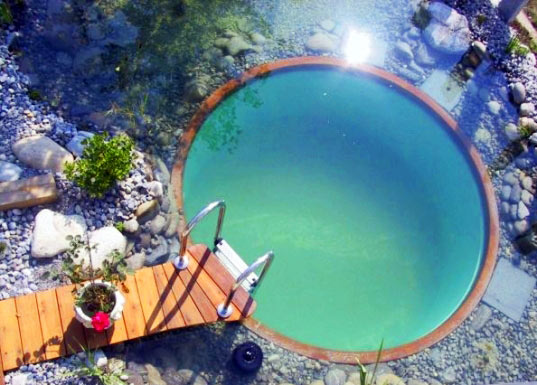 Natural Swimming Ponds Ditch the Chemicals
