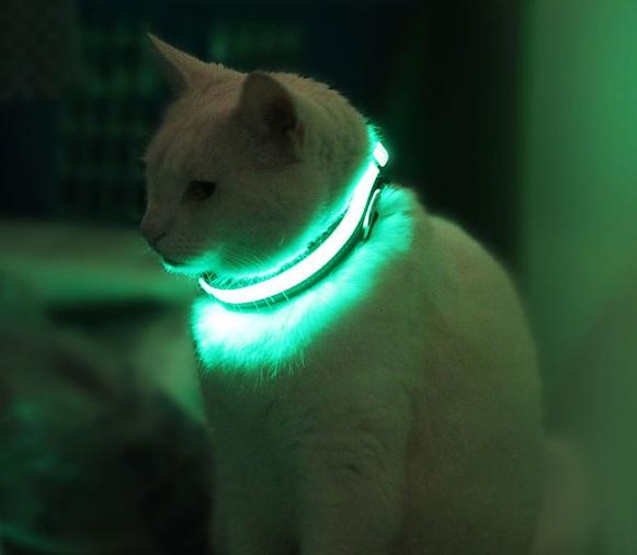 HALO MINI Pet Collar