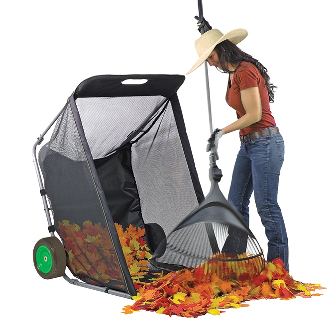 Lawn and Leaf Cart