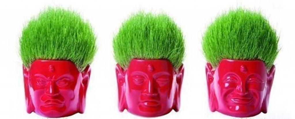 Buddhist head home gardening set
