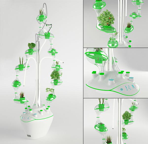 The Plant Tree