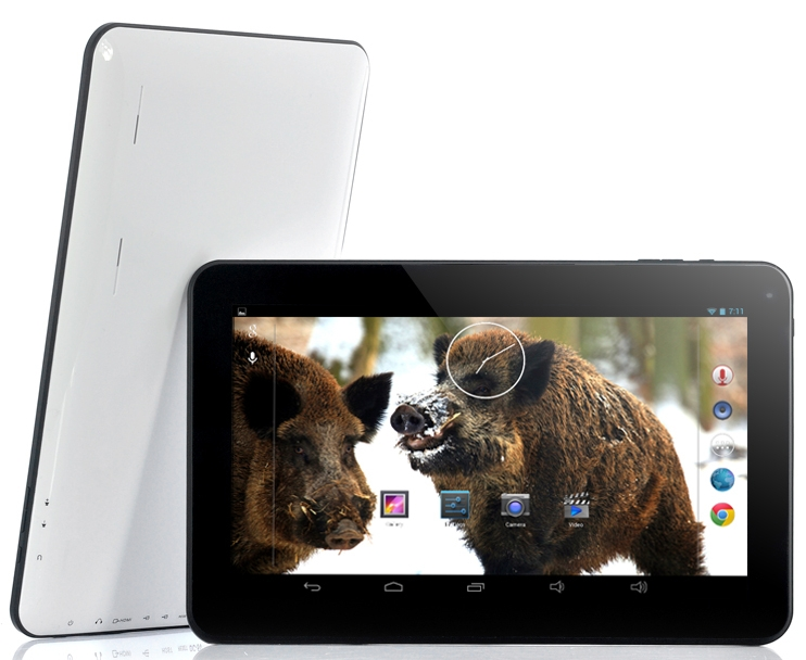 10.1 Inch Cheap Dual Core Android 4.2 Tablet PC Boar