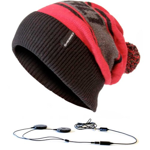 Beanie Built in Headphones