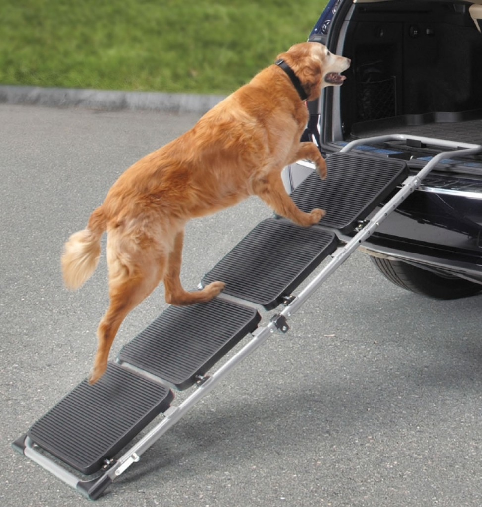 The Portable Pet Staircase Or Ramp Gadgets Matrix