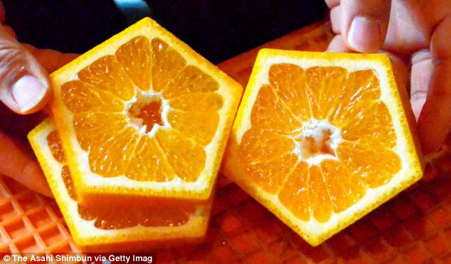 Farmers create pentagon-shaped fruit
