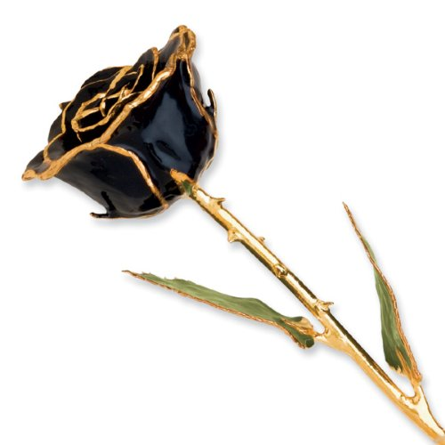 24k Gold Trim Black Rose