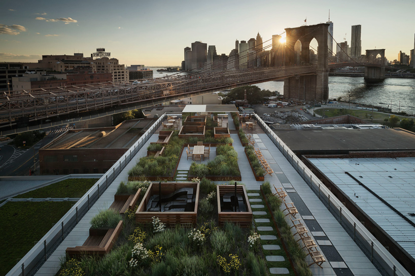 60-water-apartments-dumbo-brooklyn-roof-garden-james-corner-field-operations-designboom-01