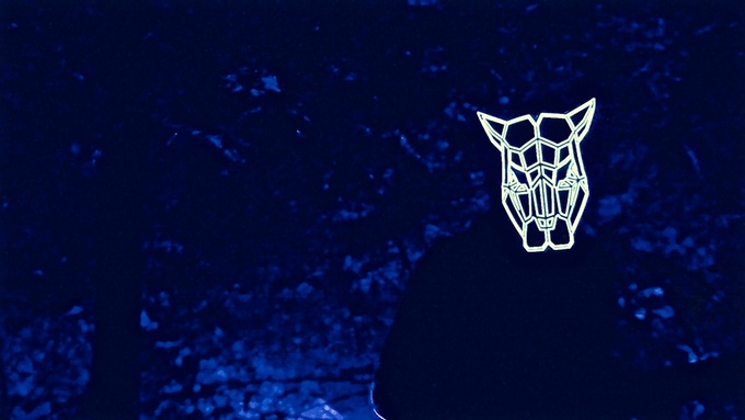 The Sound Reactive Mask