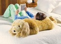 Cuddly Spaniel Body Pillow