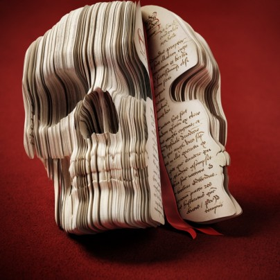 Adventurer's Diary Skull