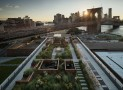 brooklyn building with communal roof garden