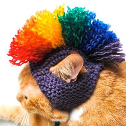 Cat Hat Costume
