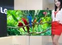 The world largest OLED TV
