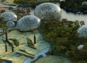 Saint Petersburg Unveils Primorskiy Zoological Park