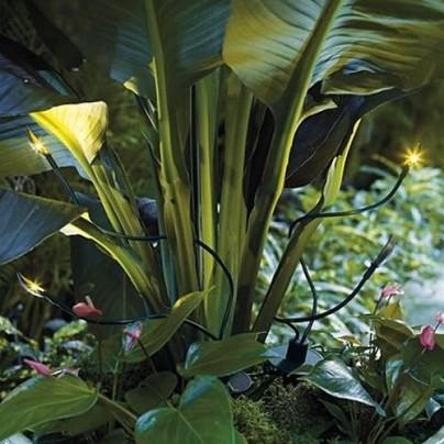 Solar Planter Spotlights