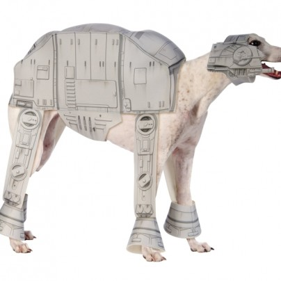 Costume Star Wars Collection Pet Costume