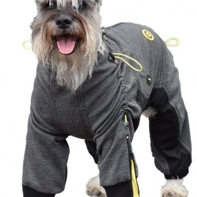 Cozy Dog Suit
