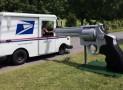 Giant 44 Magnum Mailbox