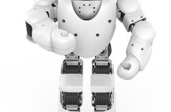 Humanoid Intelligent Robot