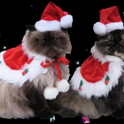 Jolly St. Nick holiday cape and Santa hat