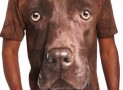 Men's Chocolate Lab Face