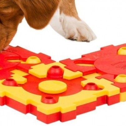 Puzzle Game for Dogs