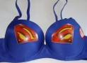 The Superman Logo Bra