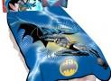 Warner Bros Microraschel Blanket