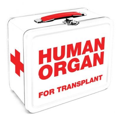 Zombie Human Organ Lunch Box