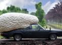 braincar