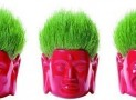 Buddhist head home gardening set