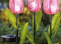 Solar Lighted Tulip Garden Stakes