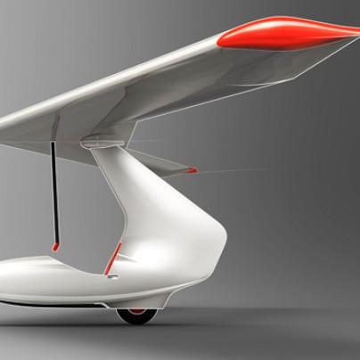 Delta hang-glider