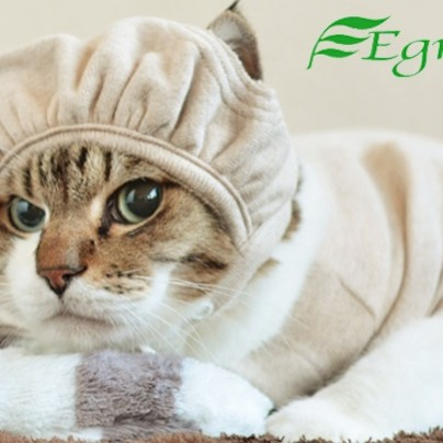 Pet clothes protective head cap