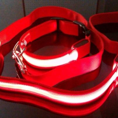 LED High Visibility Flashing Lights