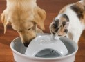 The 128-Ounce Ceramic Pet Fountain