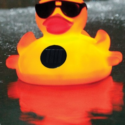 Solar Light Up Duck Pool Chlorinator