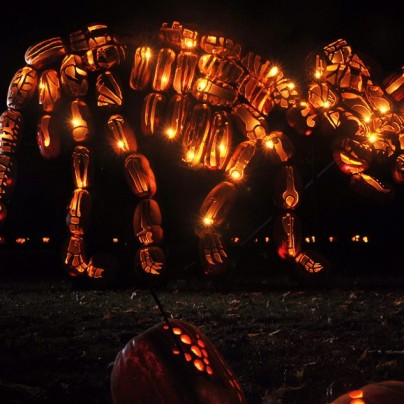 mammoth pumpkin carvings at the great jack o'lantern blaze