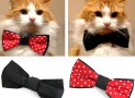 CAT & DOG BOW TIE