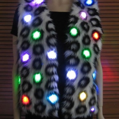 Lighted vest